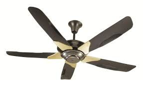 Ceiling Fan Repair & Installation
