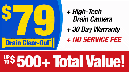 $79 Drain Clean-Out