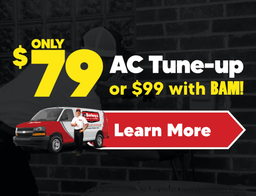 $79 AC Tune-up or $99 with BAM!